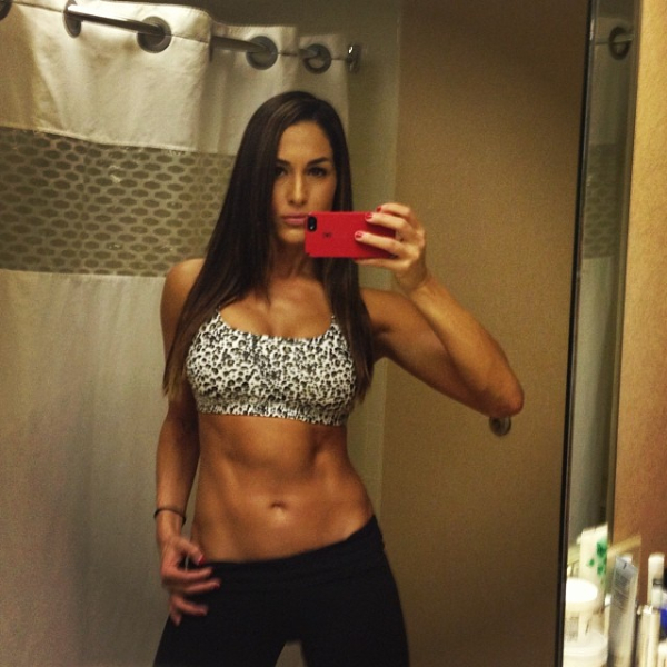 Photos hot new cleavage selfie shots of nikki bella pwmania - Diva nikki bella ...