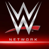 Change For Two WWE Network Shows, Ric Flair Talks About WWE & 49ers (Video)