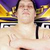 Forbes Calls Andre The Giant Memorial Battle, 'Attempt To Broaden Fan Base'