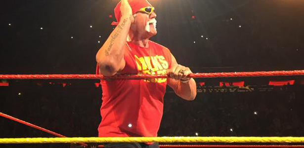 Brooke Hogan Doesn't Deny Hulk Hogan - WWE Claims, WWE