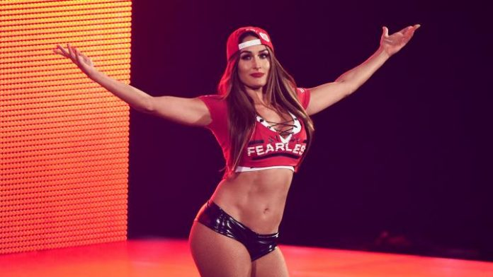 Nikki Bella Teases Appearance In Women's Money In The Bank Match